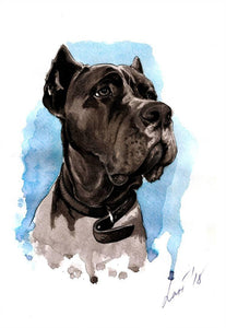 Cane Corso- by Olha Okruzhko - Diamond Painting Kit