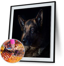 German Shepherd 5DArtist