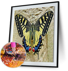 Giant Swallowtail Butterfly 5DArtist