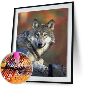 Gray Wolf 5DArtist