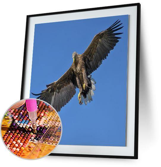 Haast's Eagle 5DArtist