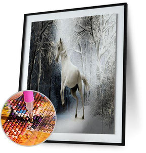 Horse Playing in Snow 5DArtist