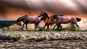 Horse Wallpaper - Diamond Painting Kit