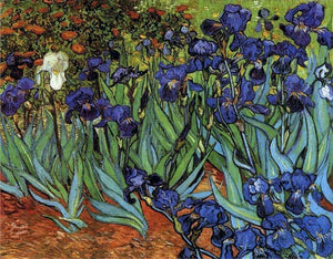 Irises - by Vincent van Gogh - Diamond Painting Kit