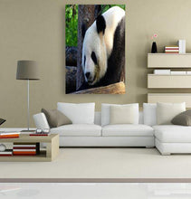Mother Panda 5DArtist