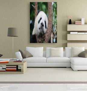 Panda on a Tree 5DArtist