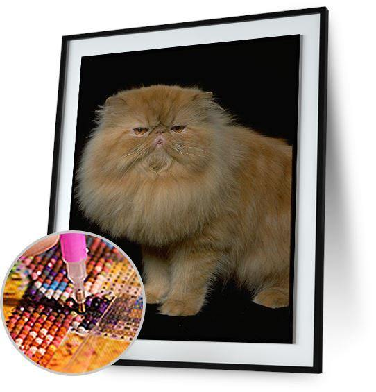 Persian Cat 5DArtist