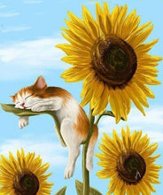 Resting Cat on a Sunflower 5DArtist