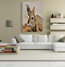 Roe Deer 5DArtist