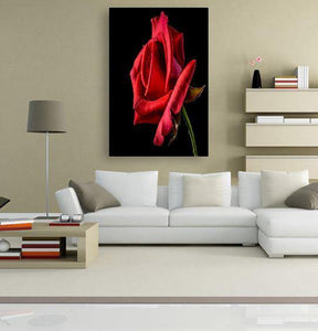 Rose Red 5DArtist