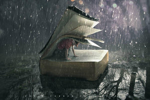 Safe in the Storm- by Kevin Carden - Diamond Painting Kit