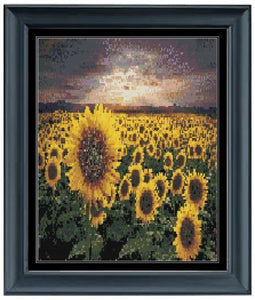 Sea of Yellow - by Kevin Carden - Special Offer Kevin Carden