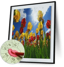 The Afternoon Stretch - by Kevin Carden - Paint By Numbers - Special Offer Kevin Carden