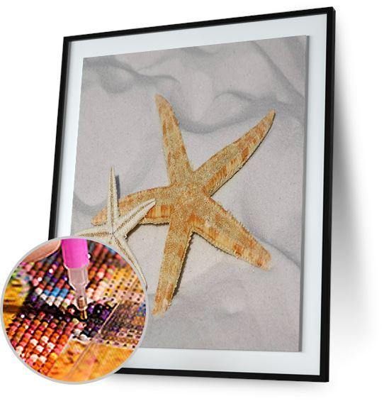 Twin StarFish 5DArtist