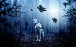 Wolf in Forest - Diamond Painting Kit