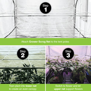 Scrog Net for Grow Tents 2 pack (4