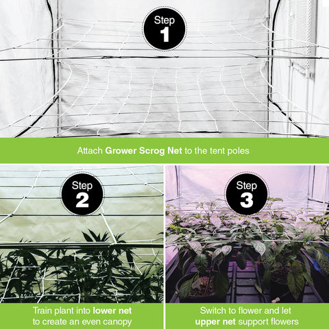 "Image of Scrog Net for Grow Tents 2 pack (4"" and 6"" mesh nets.)"