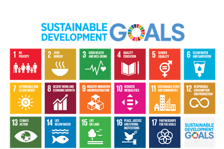 17 principles sustainability