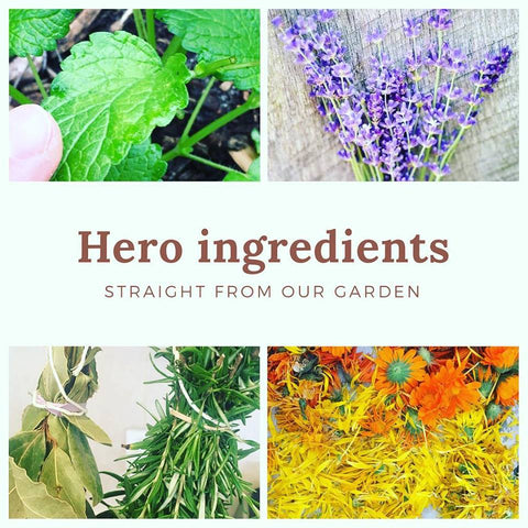 herbs for natural skincare