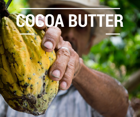 cocoa nutter fair trade