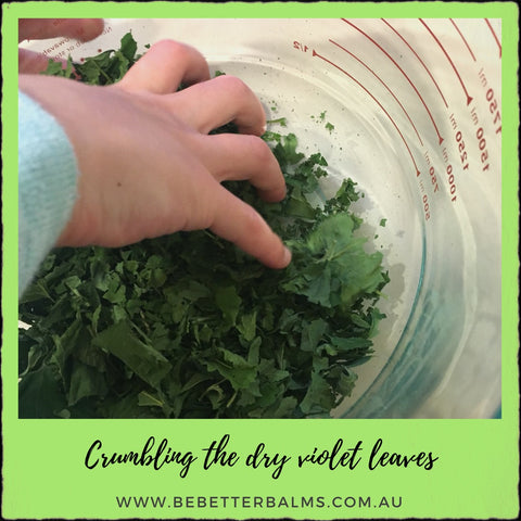 how to dry violet leaves