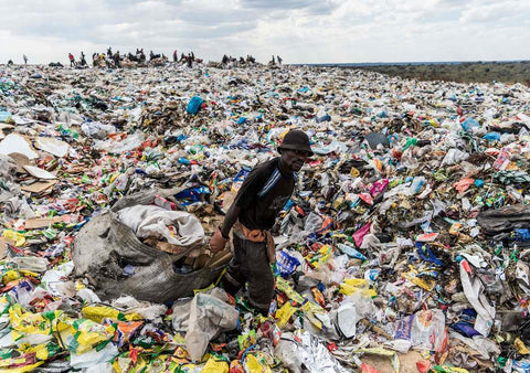 cradle to grave landfill