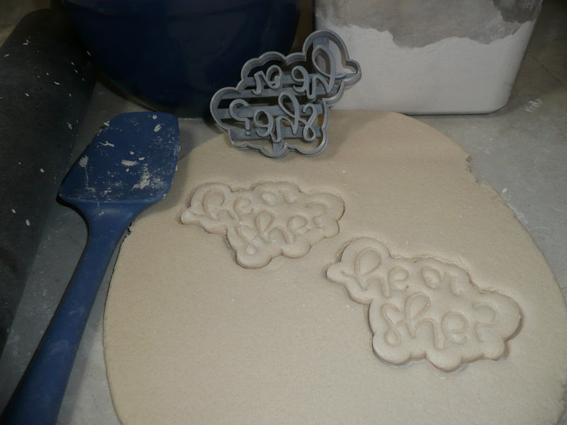 He Or She Gender Reveal Baby Announcement Shower Cookie Cutter USA PR2522