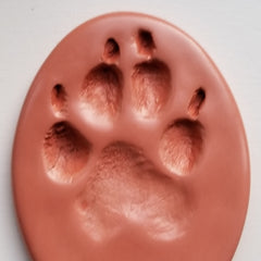 River and Birch Clay Impression Paw Print