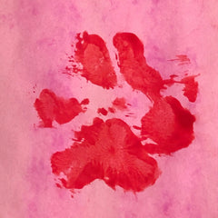 River and Birch Finger Paint Paw Print