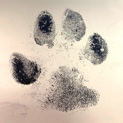 River and Birch Ink Paw Print