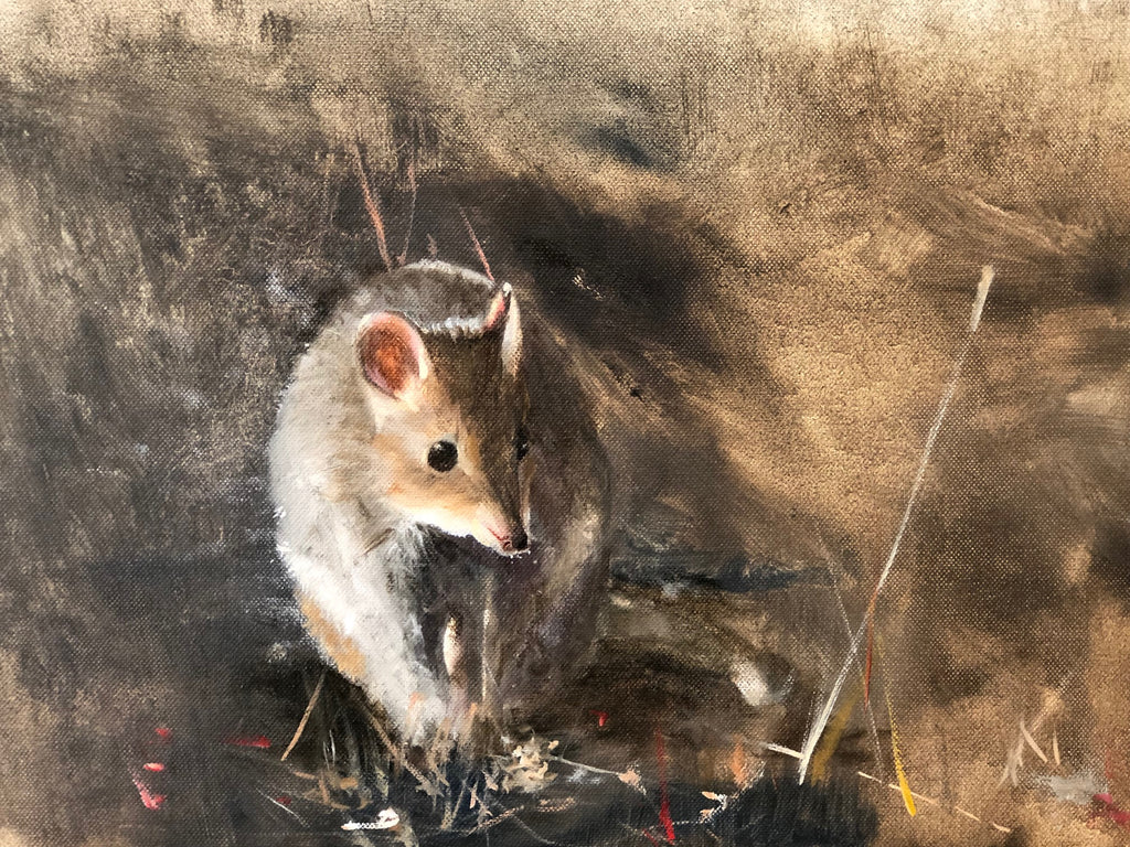 A Bettong Workshop? ....... No Way! - By Peter Trusler