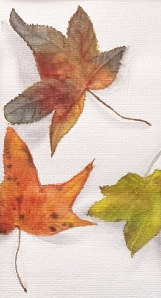 autumn leaves painting in watercolour