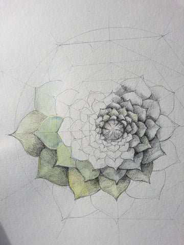 Drawing 2, Term Four 2019 - with Lesley Wallington