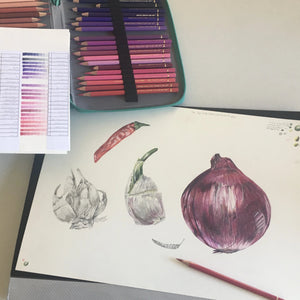 INTRODUCTION TO COLOUR PENCIL    From 20 July - 24 August 2020  Beginners