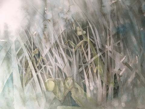 Painting with Watercolour 1 - with Gillian Carden