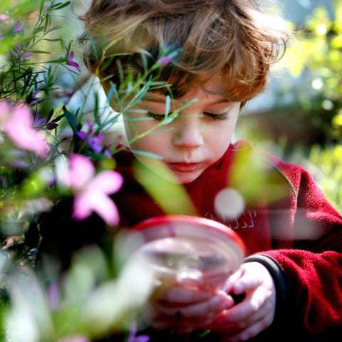 NatureArt Kids Club - Design Your Own Native Garden - 28 July 2019