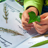 NaturExplorers! * New Nature Journaling Club for Families* - Looking at Leaves - Sunday February 2nd 2020