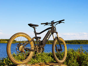 Quiet Kat Fat Tire ebike
