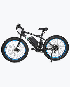 ECOTRIC Fat Tire Beach Snow E-Bike