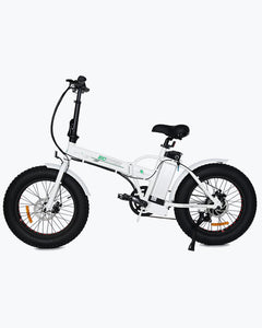 ECOTRIC Fat Tire 500W 36V Folding E-Bike
