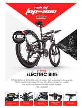 RichBit 250W 36V Cruiser E Bike