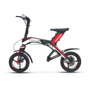Max-X1 Mountain Hybrid Bike 300W