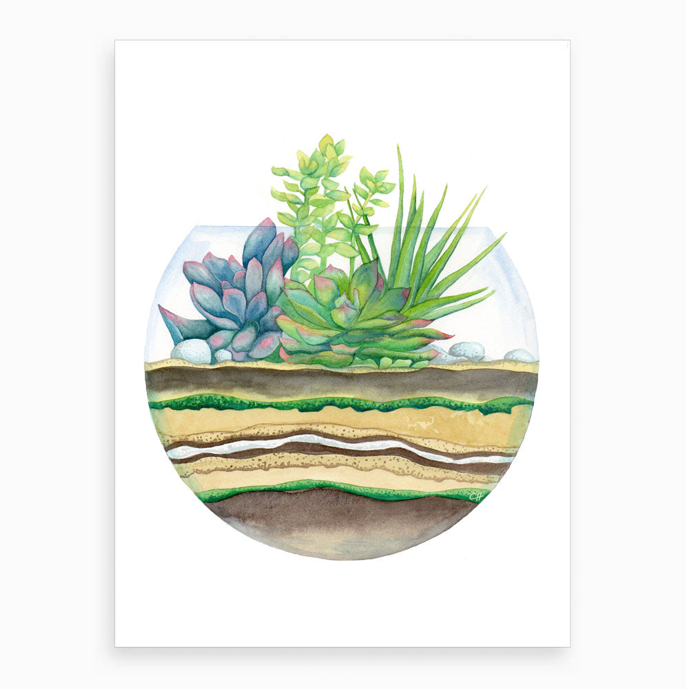 'Little Green Terrarium' Botanical Watercolour Giclee Art Print