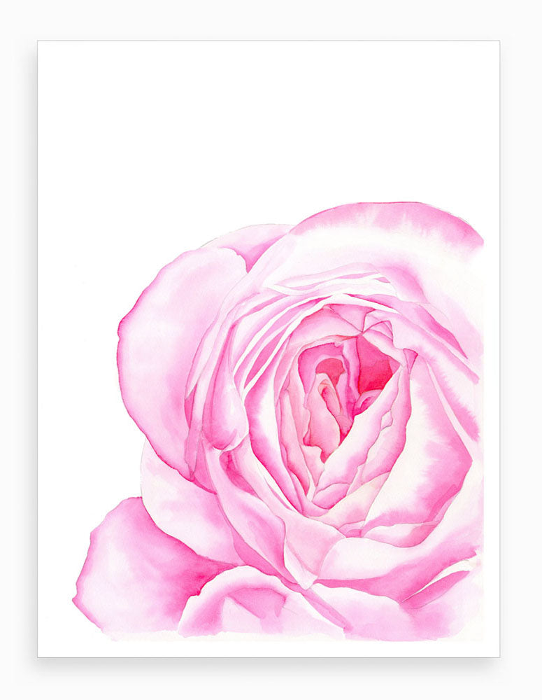 Love is a Rose Giclée Art Print