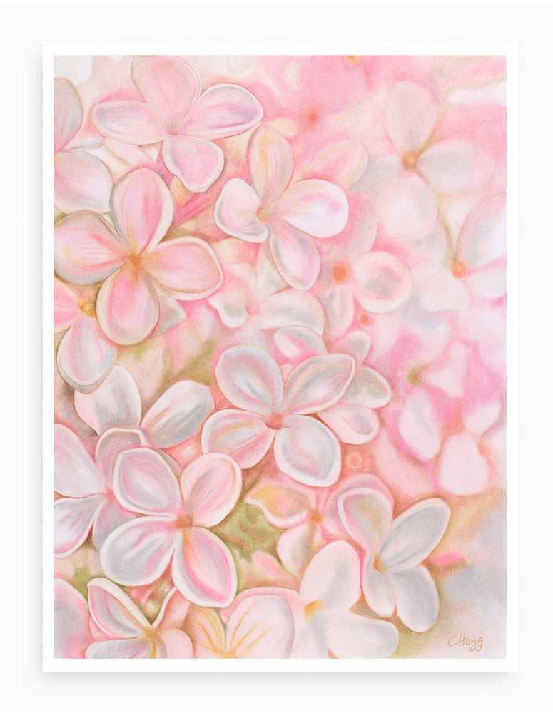 'The Essence of Spring Lilac Flower' Giclee Fine Art Print