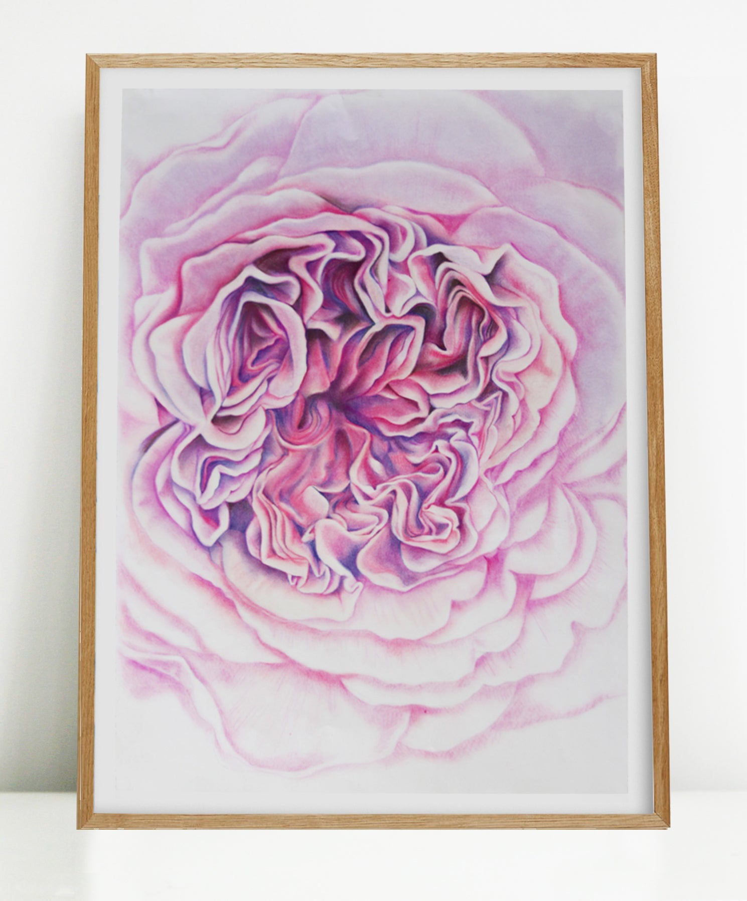 A Rose is a Rose in Pink - Large Giclée Art Print