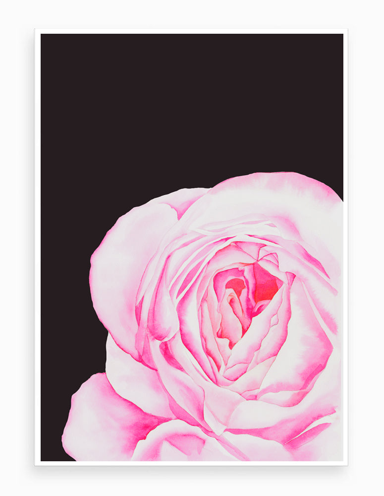 Love is a Rose on Dark Ink - Signed Giclée Art Print