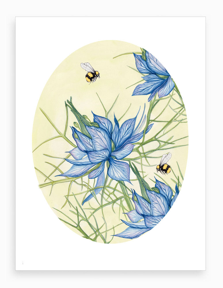'Love in a Mist with Bees' Botanical Giclee Art Print