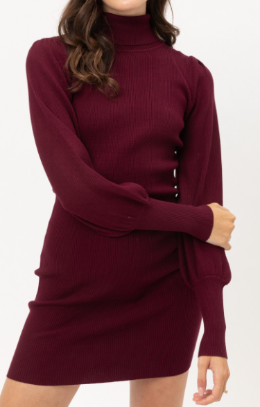 Wine Turtleneck Sweater Dress