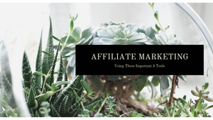 The Best Affiliate Marketers are Using These Important 3 Tools
